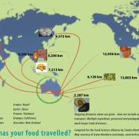 Food miles: how far have your fruit and vegetables travelled?